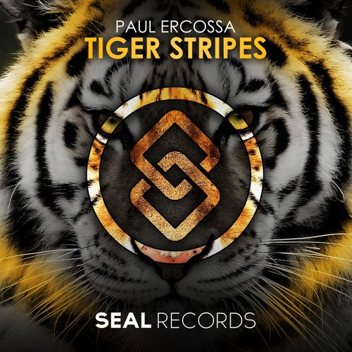 Paul Ercossa - Tiger Stripes (Original Mix)