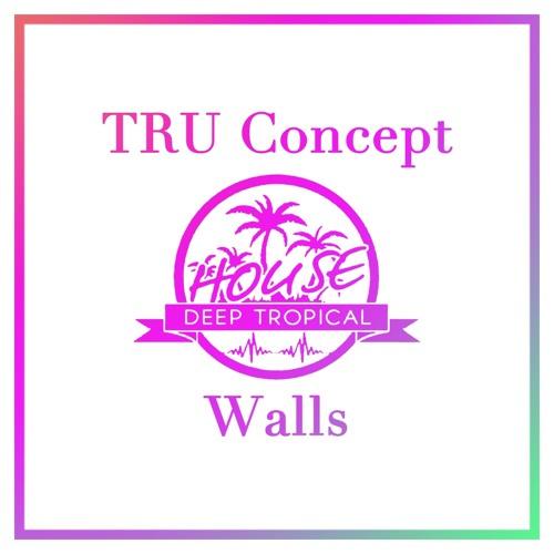 Slaptop - Walls (TRU Concept Remix)