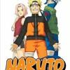 Naruto Chapter 246