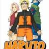 Naruto Chapter 247