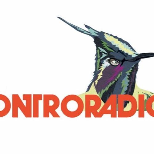 """""""Il grande regno dell'emergenza"""" su Controradio. Intervista con Domenico Guarino"""