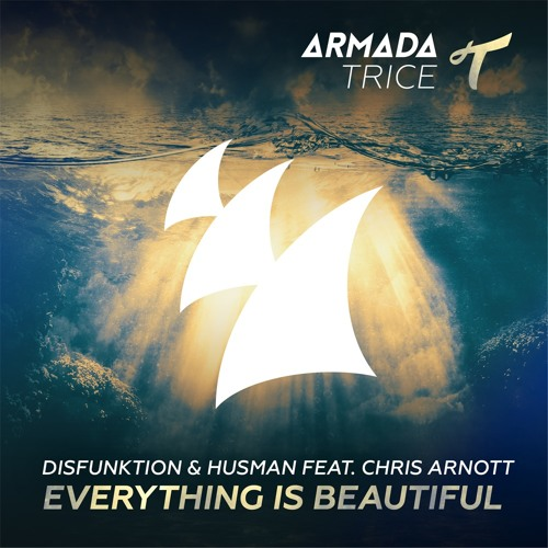Disfunktion & Husman feat. Chris Arnott - Everything Is Beautiful (Extended Mix)