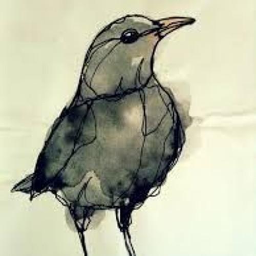 Eran Ben zeev - Black Bird (UNRL)