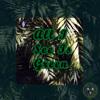 Cay J X ZMG X Boy WNDR X LB Swan - All I See Is Green (prod. Zmgeezus)