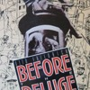 Before the Deluge: A Portrait of Berlin in the 1920 s  download pdf