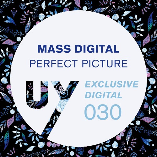 Mass Digital - Perfect Pictures