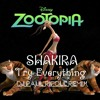 Shakira -Try Everything (DJ Paul Ripoll Remix) From Zootopia