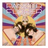 Panzer Flower - Everything For You (Radio Edit) mp3