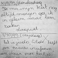 Slaapwel Dagboek | Lize Spit