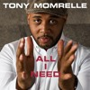 Tony Momrelle - All I Need (Reel People Vocal Mix).mp3