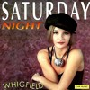 Whigfield - Saturday Night (Dj Carlos Ache' Billy Ganara' Radames' Rmx')