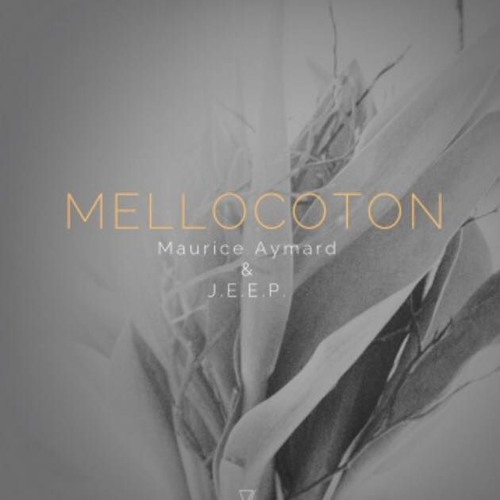 A1 - Mellocoton (Original Mix) 128 Kbps