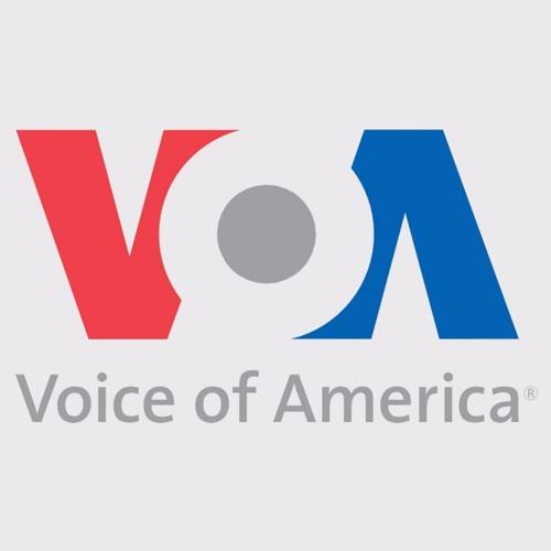 Amerika'nın Sesi Radyosu'nun Remzi Gokdag ile röportajı