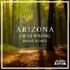 ARIZONA - I Was Wrong (Roiyal Remix)