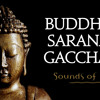 Buddham Sharanam Gachami
