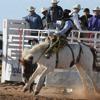 Navajo Wranglers - Rodeo Man