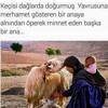 Ezginin Günlüğü - İnsan Sever Bir Kere ( Official Video ).mp3