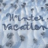 A Winter Vacation