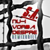 IT AIN'T ABOUT (Nu-i Vorba Despre) (TELLURIUM Remix By Tulamide