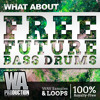 FREE Future Bass Drums [65 Flume Inspired Drum Samples & Loops]