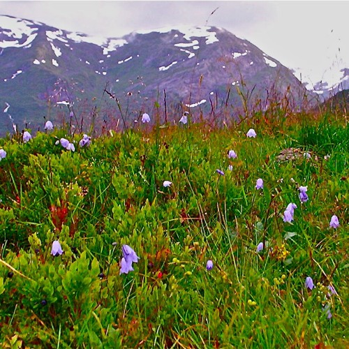 Mountain Song At Prekestolen. Arne Hiorth and Oddrun Eikli