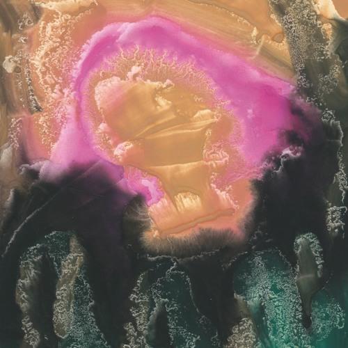 Èlg - Mauve Zone (feat. Catherine Hershey) - LP  - Nashazphone - 2016