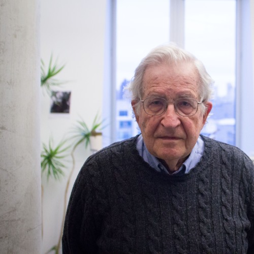 Noam Chomsky, 'The Human Species Has Never Faced A Question Like This'