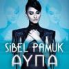 Sibel Pamuk - İner Gider Şu Dağların Dumanı mp3