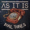 As It Is - Dial Tones (VOCAL COVER)