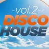 Style31 Disco House Vol2