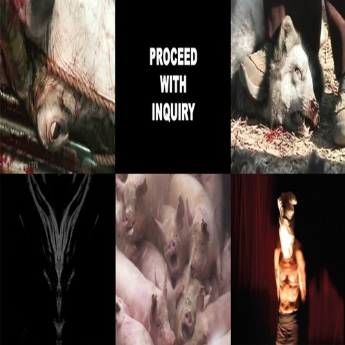 video action excerpt (from 'proceed with inquiry' DVD)