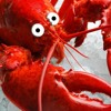 Leroy Lobster
