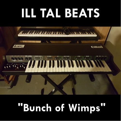 Ill Tal- Bunch of Wimps (Instrumental)