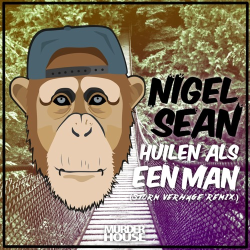 Nigel Sean - H.A.E.M. (Storm Verhage Remix)
