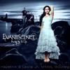 Evanescence - Bring Me To Life 2016 (Hazetrix & Leslie Jr. MNML Bootleg) // FREE DOWNLOAD