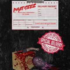 Special Delivery(Murda Who?) - Phat Geez