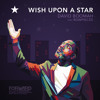 David Boomah - Wish Upon A Star ft. Rowpieces (The Lost Soundsystem Remix) [Premiere]