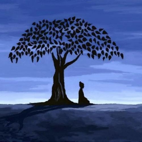Apresentação Curso online Meditação Junho 2016