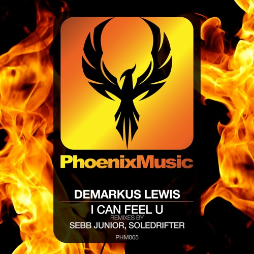 Demarkus Lewis - I Can Feel U (Remixes) [Phoenix Music]