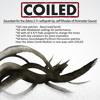Perimeter Sound - COILED [ZEBRA]