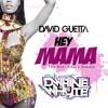 David Guetta - Hey Mama - Dwaine Whyte Remix