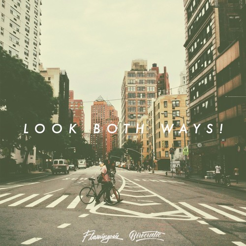 Birocratic x Flamingosis - Look Both Ways