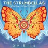 The Strumbellas - Spirits (Carl Muren presents  London 2 Monaco remix)RADIO EDIT mp3