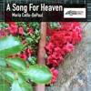 """""""A Song for Heaven""""  original improv in Em on NAFlute"""