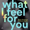 Download Geolo Berlange & Greta Garbo - What I Feel For You (Dio S Remix) Mp3