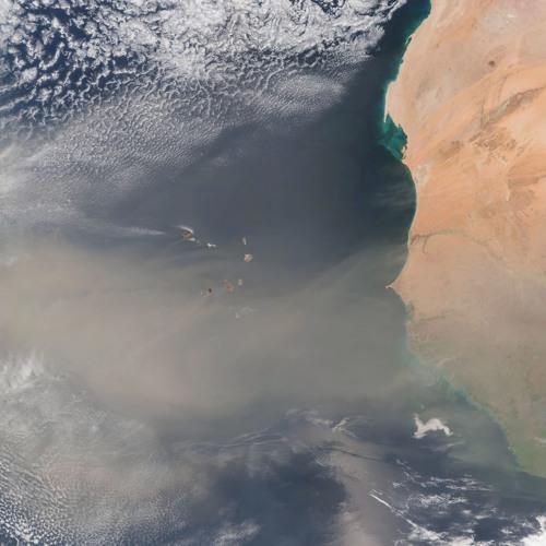 Saharan dust: Sustaining the Amazon? | Ian Ashpole