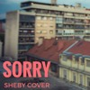 Beyonce - Sorry ( Sheby Cover) FREE DOWNLOAD