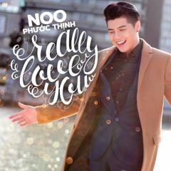VMix | Really Love You (Touliver Remix) - Noo Phước Thịnh