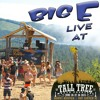 Live @ Tall Tree Music Festival 2015