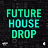 Marko Stc's Future House Drop + FLP, Presets & Tutorial [FREE]